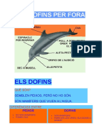 DOFINS.doc
