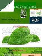 Determinacion de Clorofila