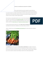 Jabón Casero de Zanahoria y Caléndula Con Propiedades Anti