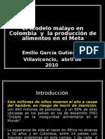 El Modelo Malayo en Colombia y Los Alimentos en El Meta EGG