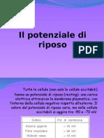 Il_potenziale_di_riposo.pptx