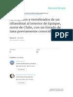 Artrópodos y Vertebrados de Un Tillandsial Al Interior de Iquique_Chile.