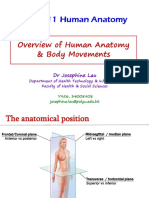 1516 L1 Overview of Human Anatomy & Body Movement