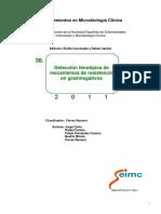 Detección fenotípica de mecanismos de resistencia en Gram negativos.pdf