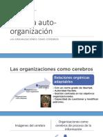 Organizaciones Como Cerebros-20161119