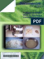 produção de farinha mista mandioca e castanha-do-Brasil