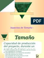 E_Tamaño_Localización.ppt