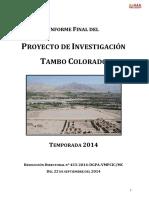 TamboColorado_InformeFinal_2014