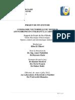 hiba tillawi.pdf