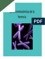 Tipos de Cromosomas