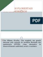 Produtos Florestais Não Madeireiros (1)