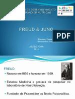Nocoes Basicas de Freud Jung 2
