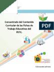 Concentrado Del Contenido Curricular de Las Fichas Del PETC
