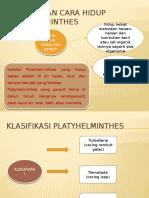 Habitat Dan Cara Hidup Platyhelminthes