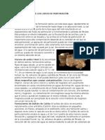 fluidos de perforacion salados.docx