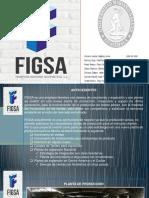 figsa evaluacion de proyectos