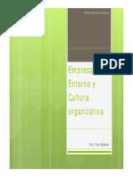 Empresa, Entorno y Cultura(1)