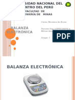 Balanza Electronica 1