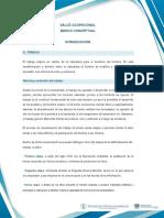 CONSOLIDADO.doc