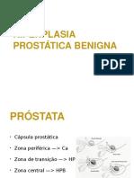 HPB-ppt1