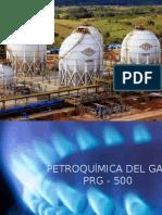 Exponer Petroquimica III