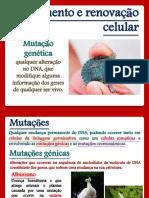 3_Mutações