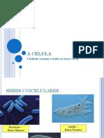 A_CELULA- ciencias 9 ano