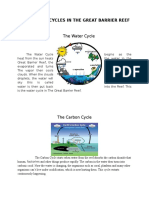 the 4 cycles in the great barrier reef