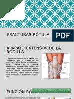Fx rotula