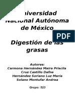 Digestion de Las Grasas- PRACTICA (1) Corregida (1)