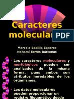 Caracteres moleculares