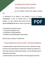 LAS PLANTAS FABRICAN SU PROPIO ALIMENTO.docx