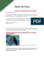 Noticias Proexport Avistamiento de Aves