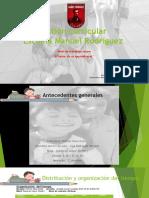 Presentacion Gestion Curricular