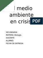 El ambiente en Crisis