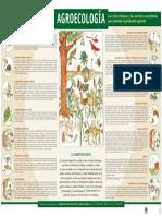 Agroecología - Infografía