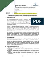 Lineamientos Proyecto_Auditoria Tributaria_2016-II (Final)