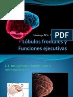 Funciones Ejecutivas - Keny Palacio