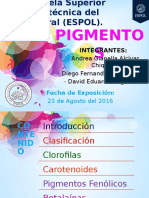 [2016.08.23] Alcívar_Guzmán_Hugo - Pigmentos