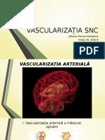 Vascularizatia SNC1