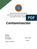 Contaminacion Todo Tipo
