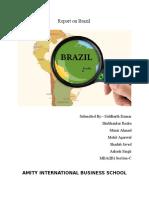 Introduction brazil.docx