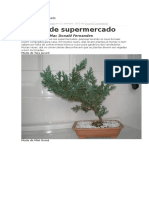 Bonsai de Supermercado