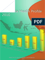 Indonesia Health Profile 2010