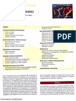 Ecografia Pediatrica Siegel Pdf