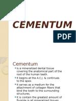 Cement Um