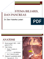 Hati, Sistema Biliaris, Dan Pancreas