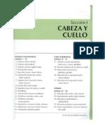 cabezaycuelloatlasdeanatomianetter-130510195316-phpapp02.pdf