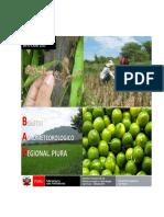 Estudio Climatologico.pdf