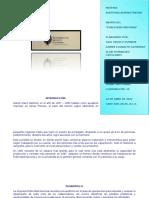157310814-Ensayo-Publicidad-Nacional.docx